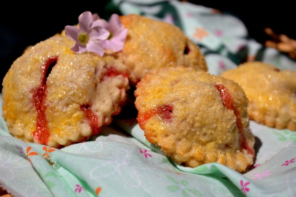 strawberry rhubarb hand pies group 2