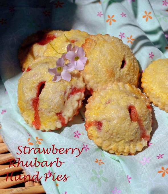 Strawberry Rhubarb Hand Pies group 4
