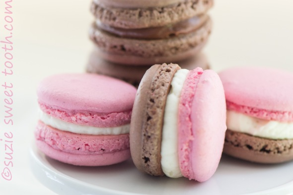 strawberry choc and neapolitan macs
