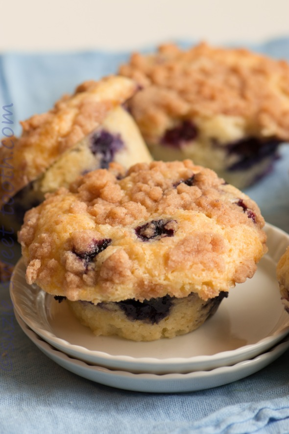 blueberry streusel muffins 3