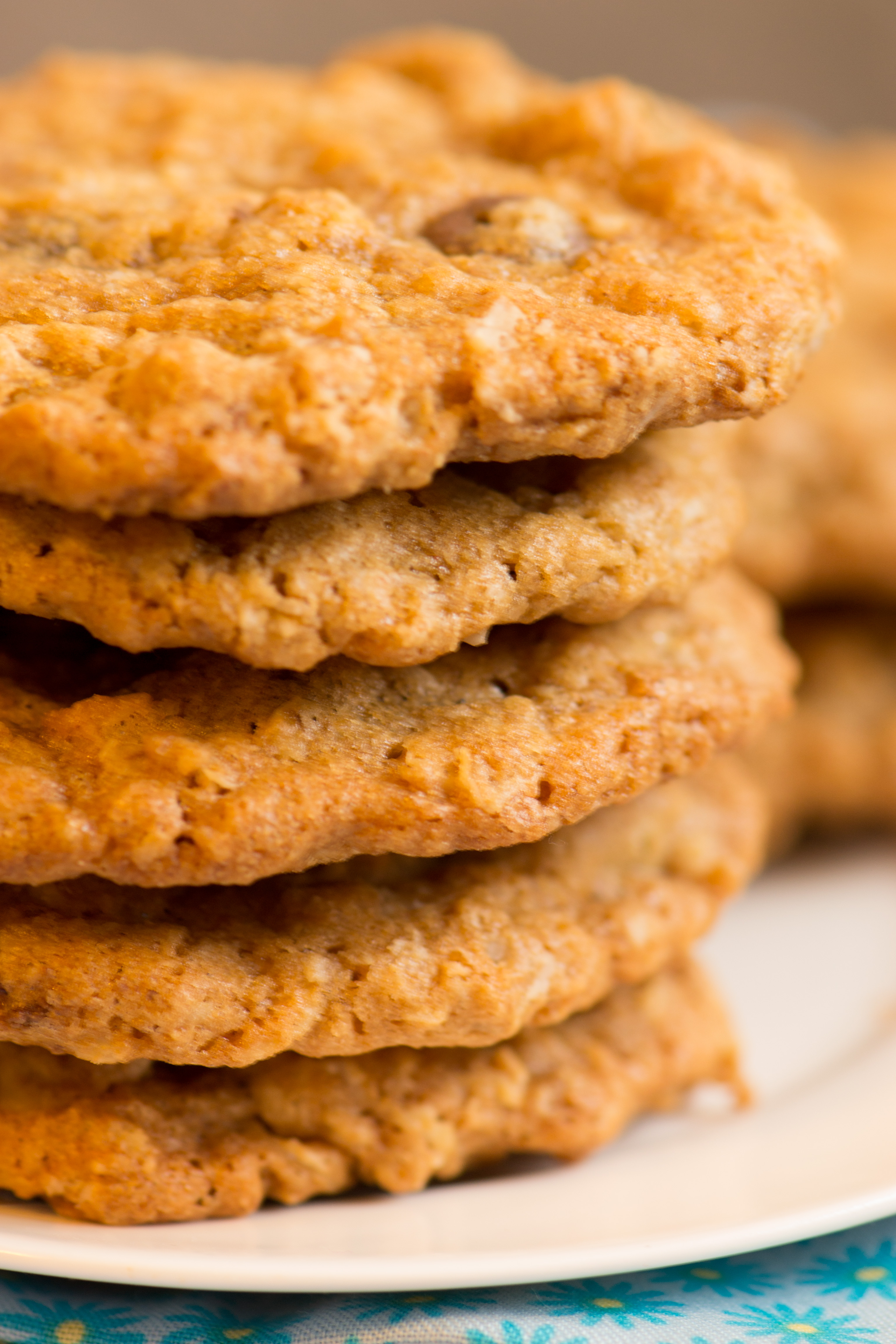 Oatmeal Raisinet Cookies | suzie sweet tooth