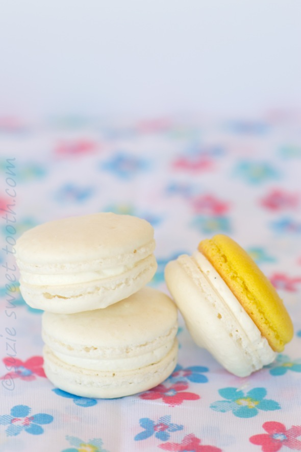 coconut and pina colada macarons