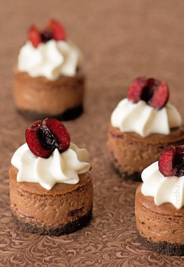 chocolate dark cherry mini cheesecakes