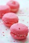 Rose Buttercream Macarons